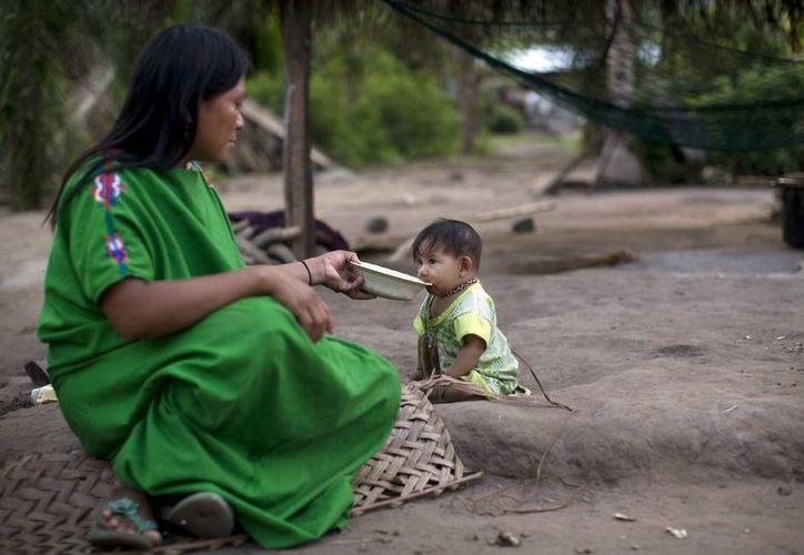 Ester Meléndez alimenta con una papilla de plátano a su hija de nueve meses, Dina, en Pichiquia, una comunidad indígena Asháninka en la región de Junín en Perú. (Agencias)