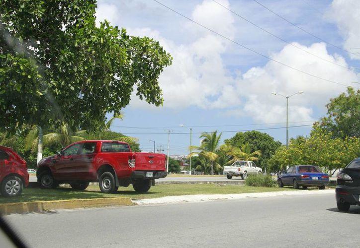 Las personas estacionen sus vehículos junto a los árboles. (Tomás Álvarez/SIPSE)