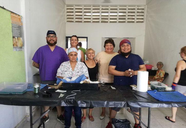 Los veterinarios voluntarios practican una cirugía que cuesta aproximadamente mil 200 pesos, pero la cobran en cien. (Javier Ortiz/SIPSE)