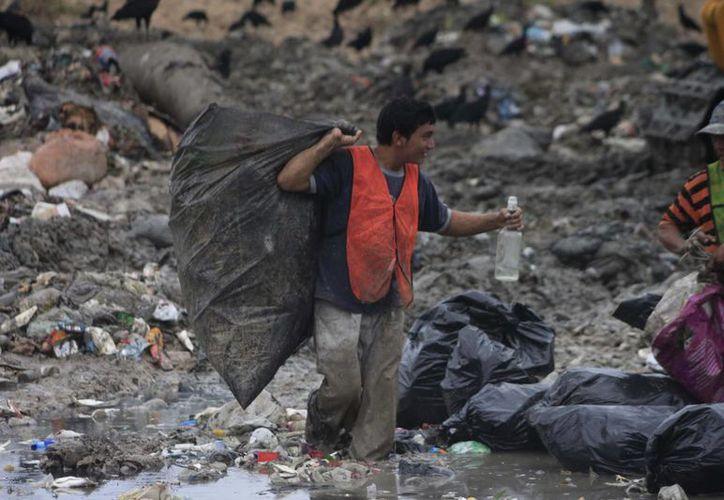 Quintana Roo se encuentra por encima de la media nacional en cuanto a la Tendencia Laboral de la Pobreza, que es medida por el Coneval.  (Redacción/SIPSE)