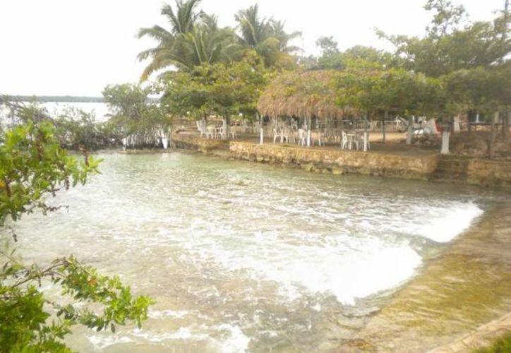 Continúa la contaminación de cuerpos lagunares en las comunidades de Luis Echeverría Álvarez y Laguna Guerrero. (Enrique Mena/SIPSE)
