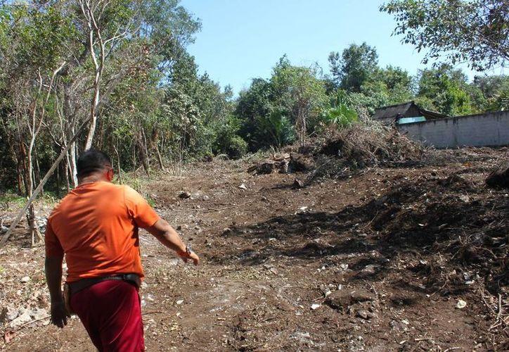 Los asentamientos irregulares de Playa del Carmen escapan a las sanciones por devastación de flora. (Adrián Barreto/SIPSE)
