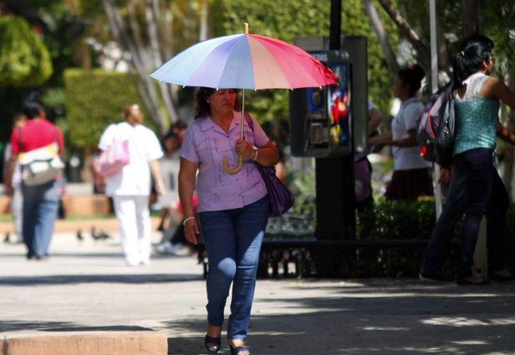 Ante el pronóstico de cielos despejados los paraguas ahora servirán para resguardarse del sol. (Christian Ayala/SIPSE)