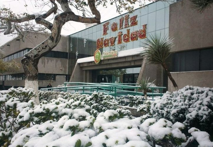 Continuarán las nevadas y las temperaturas bajas los próximos días, informó Protección Civil del Estado. La imagen es de Ciudad Juárez. (Notimex)