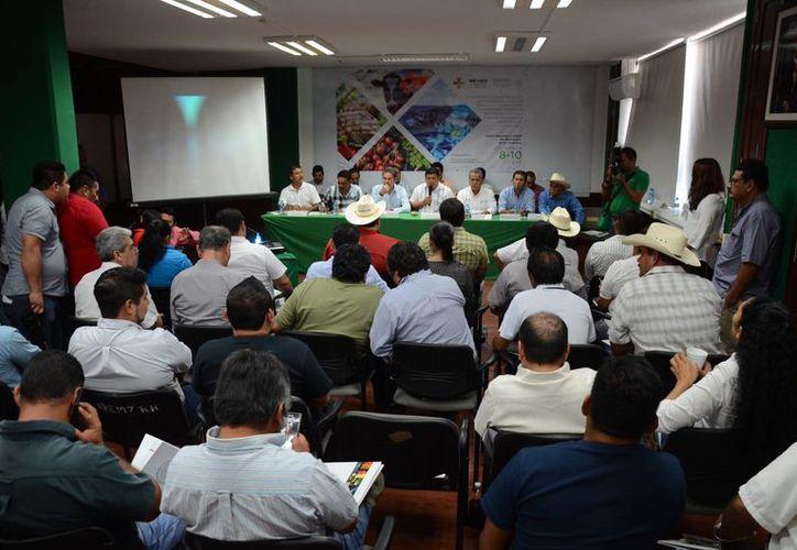 Productos hechos en Quintana Roo serán expuestos en la Feria México Alimentario en la Ciudad de México. (Juan Rodríguez/SIPSE)