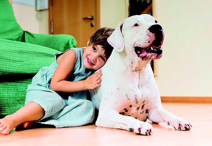 Los niños aprenden a medida que van creciendo junto a su perro. (Redacción/SIPSE)