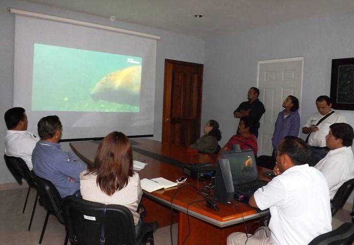 El objetivo es la transformación, preservación y conservación del Santuario del Manatí. (Harold Alcocer/SIPSE)