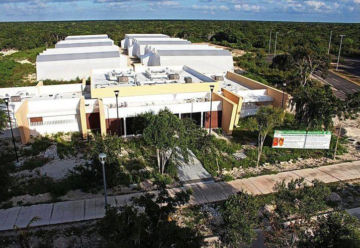 El Centro de Servicios Agrobiotecnológicos tendrá un laboratorio en Yucatán que será único en Latinoamérica. (Milenio Novedades)