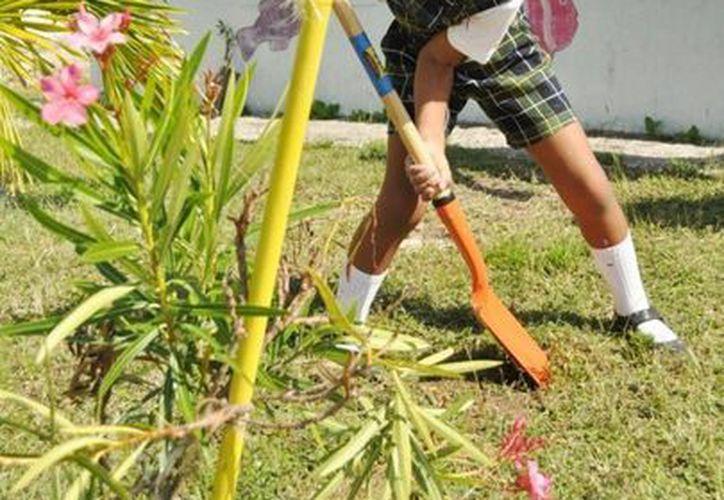 Más niños tendrán la oportunidad de realizar estas actividades, ya que se planea seguir con otros planteles educativos. (Redacción/SIPSE)