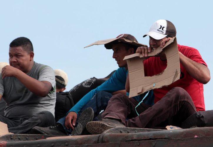 El secuestro de inmigrantes se ha vuelto frecuente en México. En la imagen, un grupo de centroamericanos a bordo del ferrocarril, en Chiapas. Imagen de contexto (Archivo/Notimex)