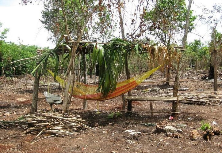 El Ayuntamiento destinará un lote habitacional a familias de escasos recursos de Bacalar. (Javier Ortiz/SIPSE)
