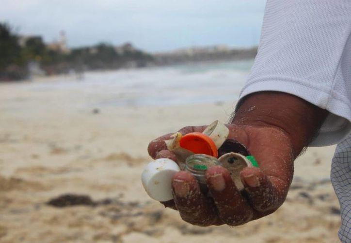 Corcholatas, colillas de cigarros y botellas de pet es lo que más se encuentra en los arenales centrales de Playa del Carmen. (Daniel Pacheco/SIPSE)