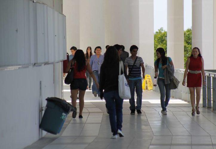 Los alumnos que participan en esta gestión se han enfrentado a dificultades, pues en la zona hotelera de Cancún les cerraron las puertas. (Redacción/SIPSE)