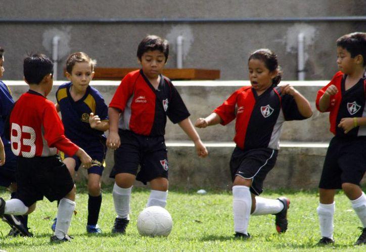 Unos 250 menores forman parte de la nueva escuela del Atlas en Mérida. (Milenio Novedades)