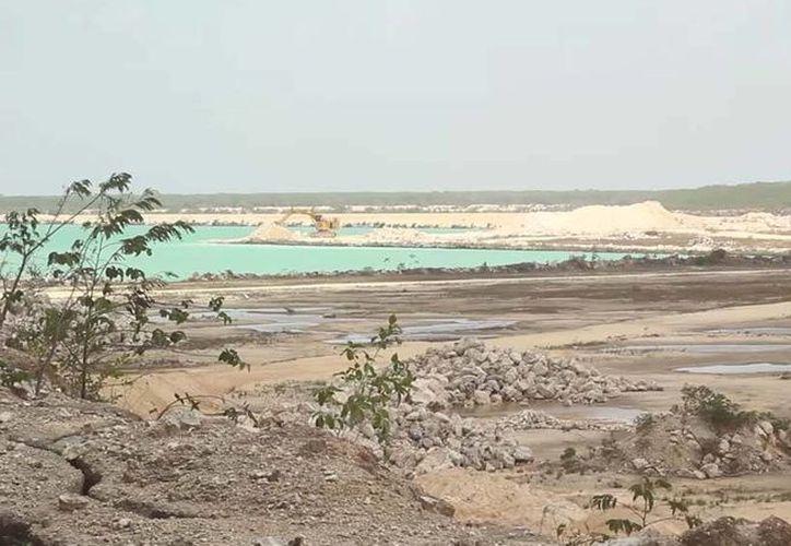 La imagen, tomada del video de la red social, muestra la deforestación que ocasiona la empresa. (Cortesía/Youtube)