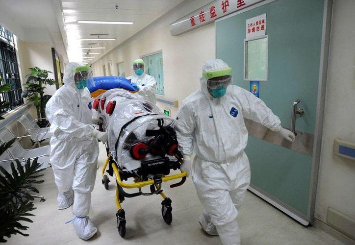 La psicosis por el ébola crece: en Nueva York, un niño de 5 años con fiebre de más de 39 grados de temperatura, fue aislado en un hospital. La imagen no corresponde al hecho: se trata de un simulacro por crisis de ébola en un hospital de China. (AP)
