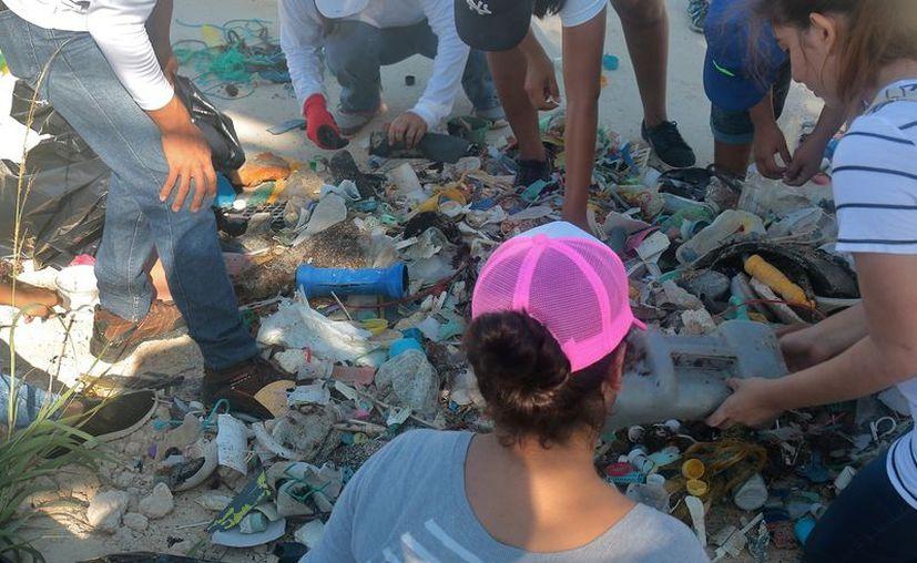 En el marco del Día Internacional de Playas Limpias,cientos de voluntarios unieron esfuerzos. (Gustavo Villegas/SIPSE)