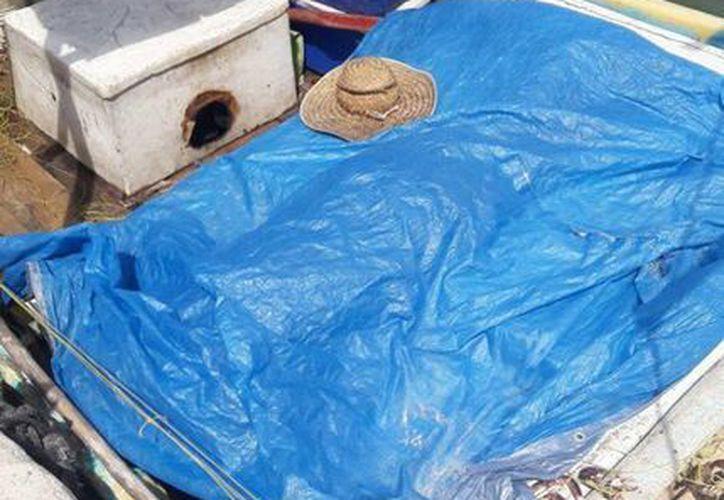 El cuerpo sin vida del pescador César A. llegó al puerto de abrigo de Chabihau, en donde las autoridades ministeriales levantaron el cadáver. (Milenio Novedades)
