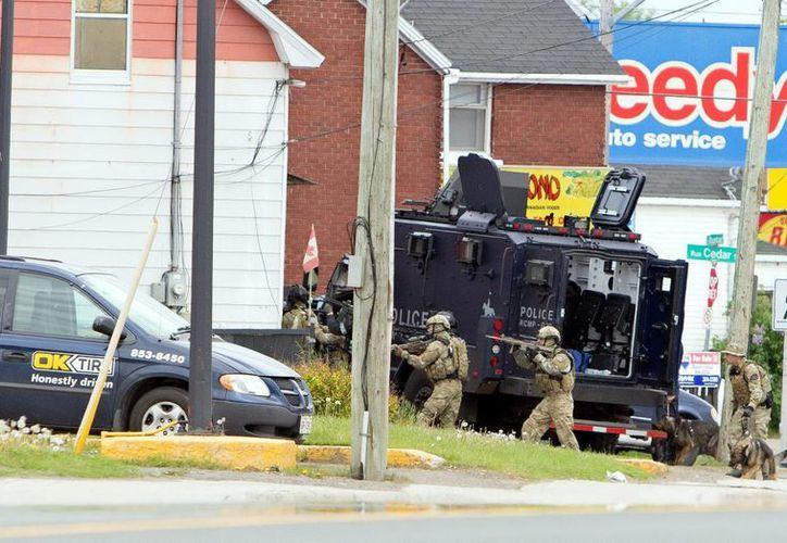 Oficiales de policía equipados con armas de largo alcance se preparan para ingresar a un edificio en Mountain Road, Moncton, Canadá, en el marco de la búsqueda del solitario autor del tiroteo. (EFE)