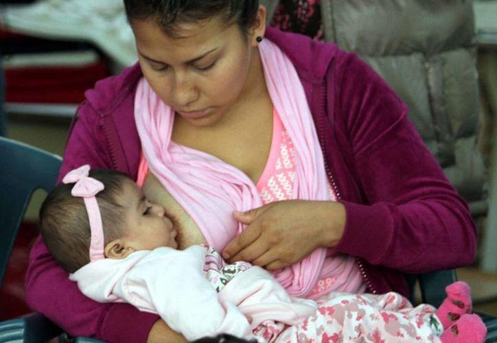 Se estima que en México solo uno de cada siete bebés es alimentando exclusivamente con leche materna. (Archivo/Notimex)