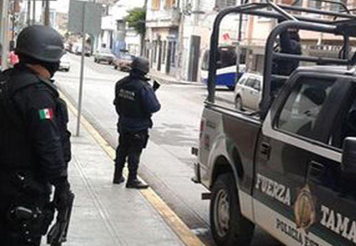 Durante el operativo fueron asegurados el predio y un vehículo. (Expreso).