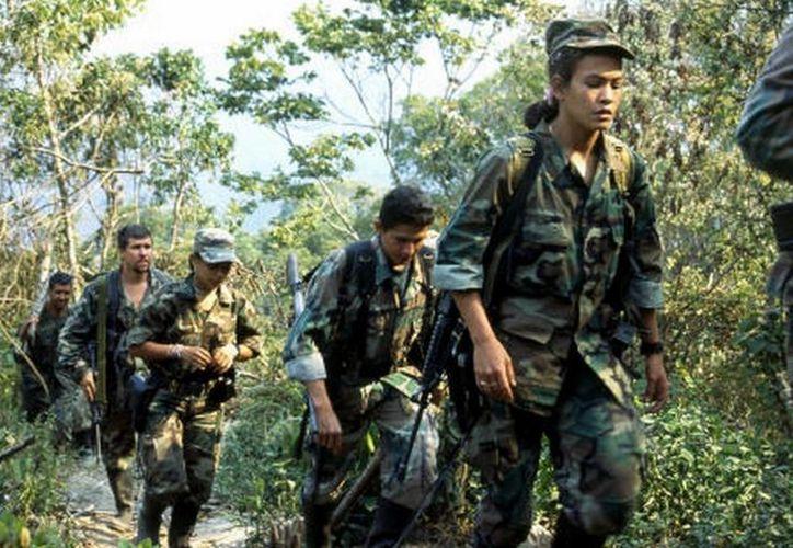 Imagen de contexto de un grupo de exrebeldes de las Fuerzas Armadas Revolucionarias de Colombia (FARC). Hoy se inició la entrega de menores de 15 años que existen en sus filas. (Notimex)