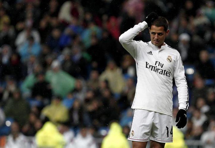 En su primera temporada con Real Madrid, el mexicano Javier Hernández no se ha podido consolidar pues tiene enfrente a compañeros como Karim Benzema, que se ha hecho de la titularidad por su contundencia. (Foto de archivo de Notimex)
