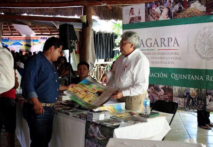 Los FIRA pretenden aterrizar 550 millones de pesos para actividades de los tres sectores económicos en Q. Roo. (Edgardo Rodríguez/SIPSE)