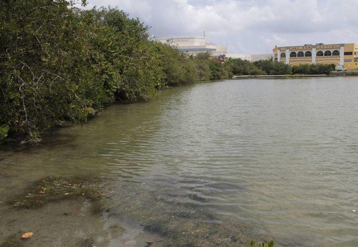El puente desahogaría el tráfico de la zona hotelera. (Israel Leal/SIPSE)