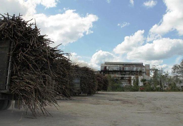 La megacaldera para generar energía a base de caña de azúcar tiene un avance de 60%. (Edgardo Rodríguez/SIPSE)
