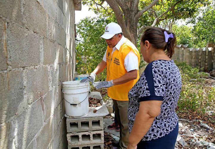 El Gobernador Rolanzo Zapata Bello participó como brigadista en la campaña 'Casa por casa', en la lucha contra el dengue, chikungunya y zika. (Milenio Novedades/archivo)