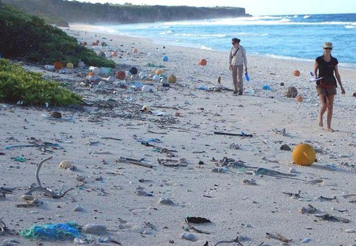 Se estima que se han depositado más de 17 toneladas de desechos plásticos en la isla, con más de 3 mil 570 nuevas piezas de basura vertidas cada día. (Foto: Tasmania University)