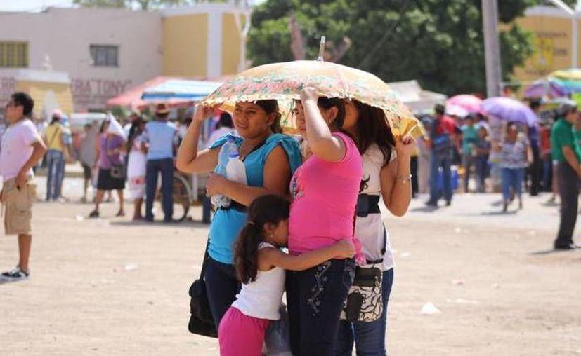 Los termómetros marcaron incluso 35 grados este sábado en Mérida.
