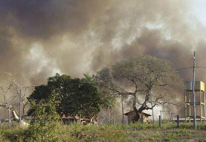 El viento y la sequía propagan el fuego rápidamente. (correodelsur.com)