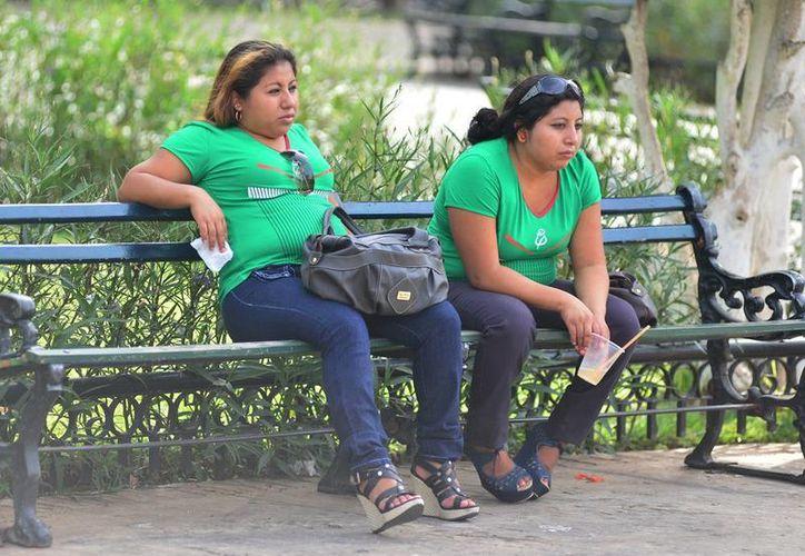 Aficionadas al futbol fueron 'derrotadas' por las altas temperaturas que prevalecieron en Mérida. (Luis Pérez/SIPSE)