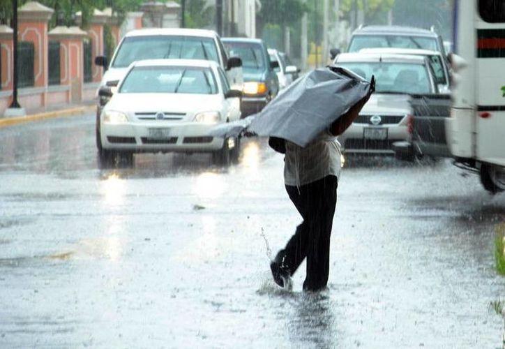 Las altas temperaturas y las lluvias que han sido comunes en los últimos días permanecerán este fin de semana, de acuerdo a un pronóstico del Servicio Meteorológico Nacional. (SIPSE)