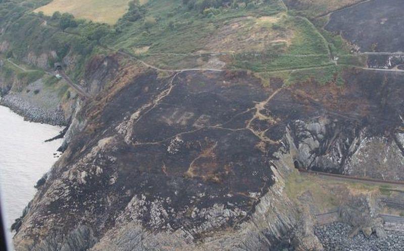 Incendio forestal revela una gran señal oculta desde hace décadas