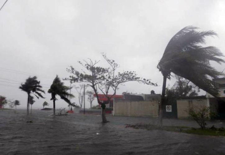 Para que una perturbación tropical se convierta en huracán tendrá que alcanzar una velocidad superior de 117 km/hora.(Archivo/SIPSE)