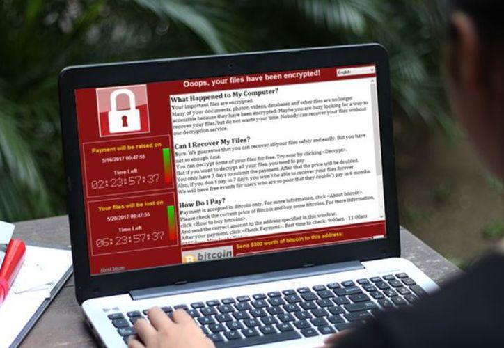 Expertos en seguridad informática temen que esta semana regresen los ataques cibernéticos, principalmente a empresas. (Diario TI)