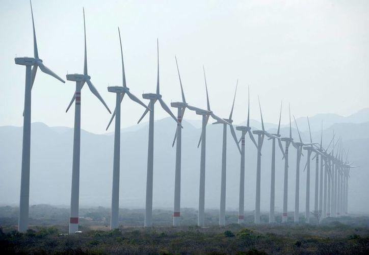 En Yucatán serán ejecutados cuatro proyectos de energía eólica de las empresas Aldesa, Energía Renovable y Consorcio Energía Limpia, luego de que la Sener les adjudicara dichas obras en la primera Subasta Eléctrica de Largo Plazo. (Archivo/Notimex)