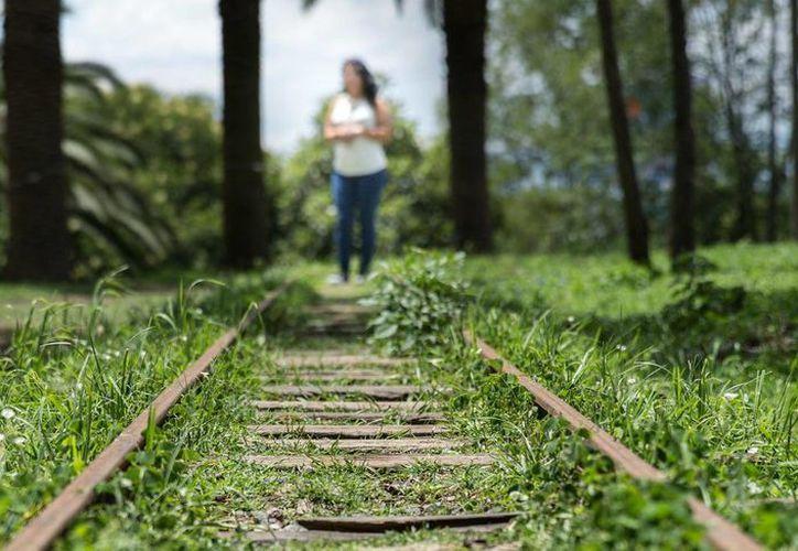 'Daniela' forma parte de la Campaña Global Hoja en Blanco, que pretende que las personas víctimas de trata cuenten su historia.  (Daniele Giacometti/VICE News)