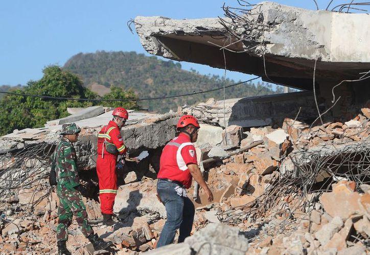 Subió la cifra de muertos del sismo a 436. Una tragedia que dejó con melancolía y tristeza al mundo. (Foto: elcorreogallego.es)