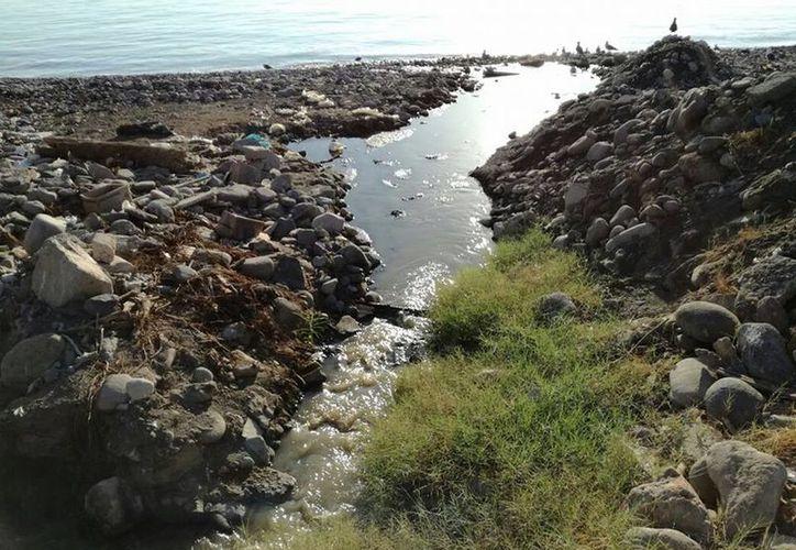 Se constató la descarga del agua proveniente de la red de drenaje municipal. (Redacción/SIPSE)