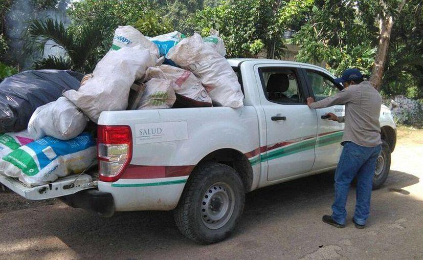 El personal del Área de Vectores retira objetos y recipientes que podrían acumular agua. (Jesús Caamal/SIPSE)