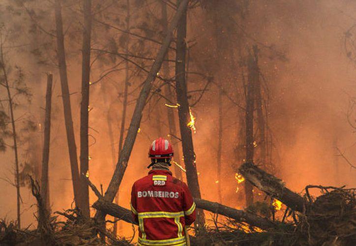 Al menos 31 personas han muerto en los incendios que afectan a Portugal. (El Mundo).
