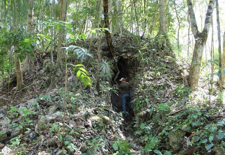 El objetivo es lograr recuperar la zona arqueológica para establecer un corredor ecoturístico. (Edgardo Rodríguez/SIPSE)