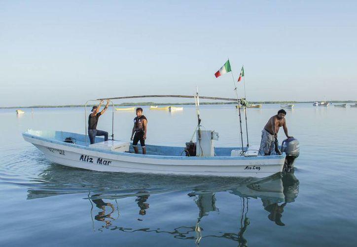 Ante la veda del mero, el Gobierno de Yucatán apoyará a pescadores y sus familias durante dos meses. (SIPSE)