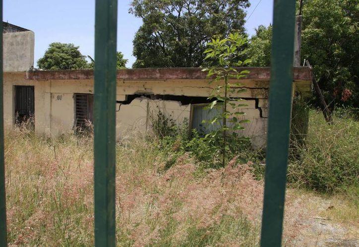 Todos los lotes baldíos con construcción, con viviendas cerradas o edificios sin funcionamiento, tienen propietario y tienen responsabilidad. (Benjamín Pat/SIPSE)