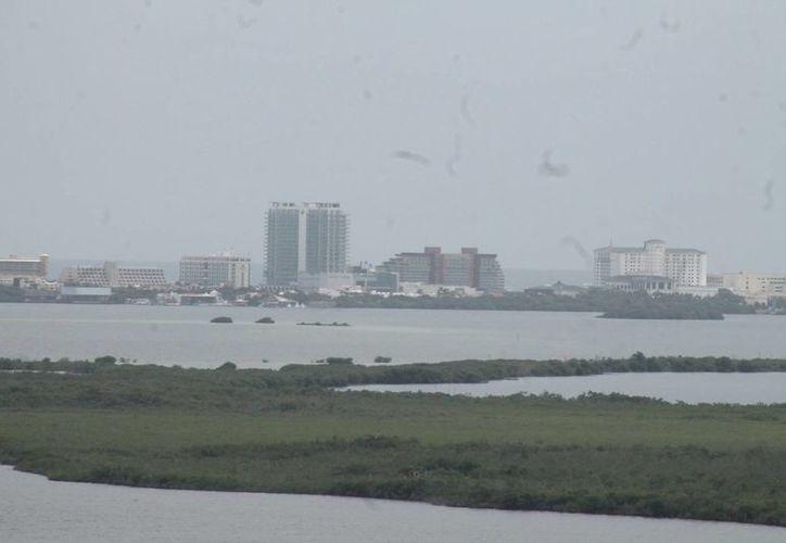 Alistan acciones de protección al medio ambiente en Quintana Roo. (Israel Leal/SIPSE)