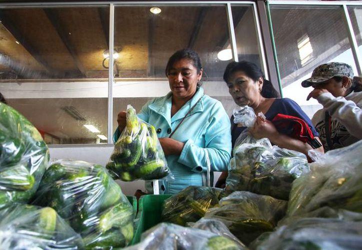 En la Ciudad de México más de un millón de personas viven en carencia alimentaria. (Francisco Cañedo).